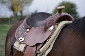 Best Horse Saddles for Long Rides 2020