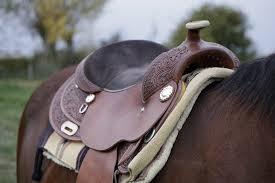 Best Horse Saddles for Long Rides 2020